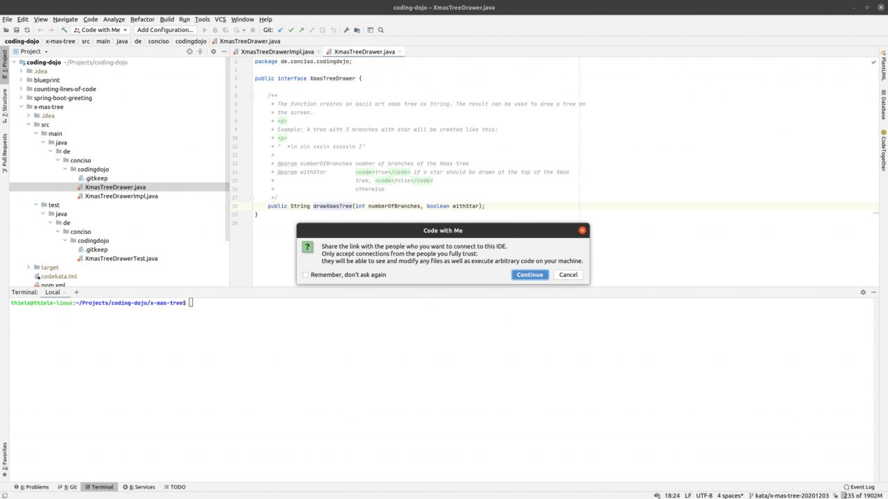 IntelliJ CodeWithMe CopyLink