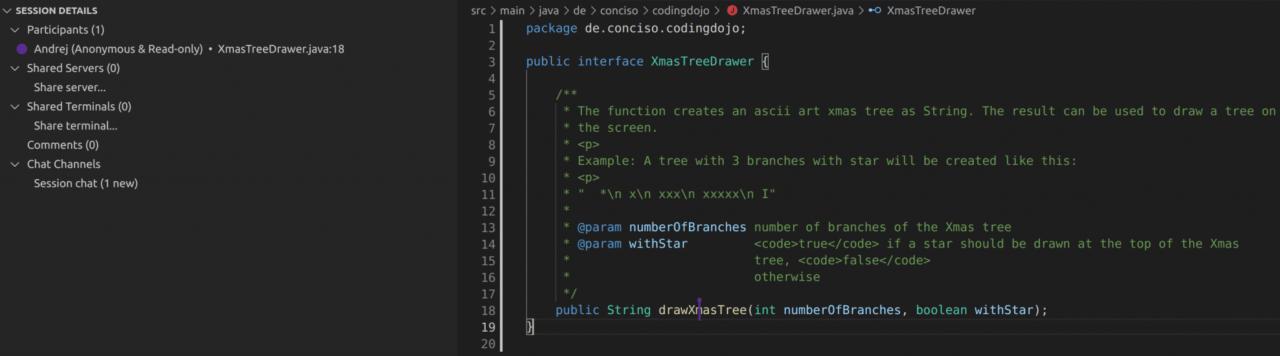 VSCode IDE Sharing Screen